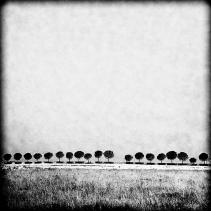 [ Photographer ] Roberto Tullj - http://robertotullj.tumblr.com